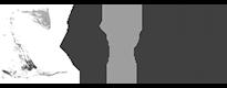 logo_bitcom grijs